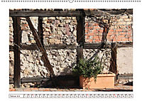 Mauerblümchen - Raus aus dem Schatten und rein in das Rampenlicht (Wandkalender 2019 DIN A2 quer) - Produktdetailbild 2