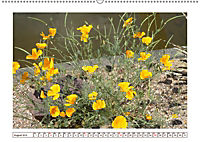 Mauerblümchen - Raus aus dem Schatten und rein in das Rampenlicht (Wandkalender 2019 DIN A2 quer) - Produktdetailbild 8