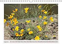 Mauerblümchen - Raus aus dem Schatten und rein in das Rampenlicht (Wandkalender 2019 DIN A4 quer) - Produktdetailbild 8