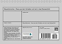 Mauerblümchen - Raus aus dem Schatten und rein in das Rampenlicht (Tischkalender 2019 DIN A5 quer) - Produktdetailbild 13