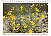 Mauerblümchen - Raus aus dem Schatten und rein in das Rampenlicht (Tischkalender 2019 DIN A5 quer) - Produktdetailbild 8
