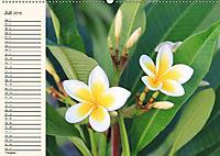 Mauritius - traumhaft und unvergesslich (Wandkalender 2019 DIN A2 quer) - Produktdetailbild 7