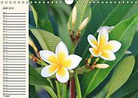 Mauritius - traumhaft und unvergesslich (Wandkalender 2019 DIN A4 quer) - Produktdetailbild 7
