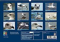 Mecklenburger Kapitänshühner (Wandkalender 2019 DIN A3 quer) - Produktdetailbild 13