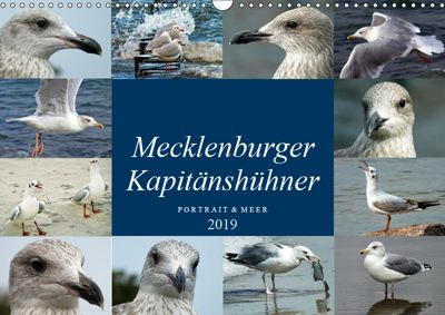 Mecklenburger Kapitänshühner (Wandkalender 2019 DIN A3 quer), Holger Felix