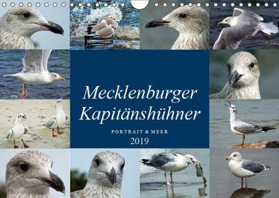Mecklenburger Kapitänshühner (Wandkalender 2019 DIN A4 quer), Holger Felix