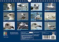 Mecklenburger Kapitänshühner (Wandkalender 2019 DIN A4 quer) - Produktdetailbild 13