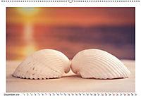 Meer Träumer - Muscheln und Schnecken Impressionen (Wandkalender 2019 DIN A2 quer) - Produktdetailbild 6