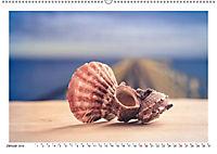 Meer Träumer - Muscheln und Schnecken Impressionen (Wandkalender 2019 DIN A2 quer) - Produktdetailbild 13