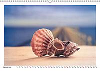 Meer Träumer - Muscheln und Schnecken Impressionen (Wandkalender 2019 DIN A3 quer) - Produktdetailbild 1