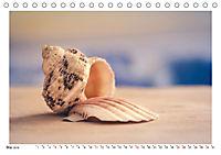 Meer Träumer - Muscheln und Schnecken Impressionen (Tischkalender 2019 DIN A5 quer) - Produktdetailbild 5
