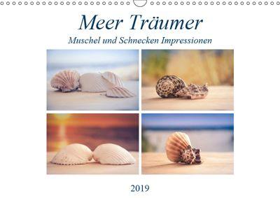 Meer Träumer - Muscheln und Schnecken Impressionen (Wandkalender 2019 DIN A3 quer), Steffen Gierok