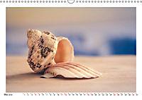Meer Träumer - Muscheln und Schnecken Impressionen (Wandkalender 2019 DIN A3 quer) - Produktdetailbild 5