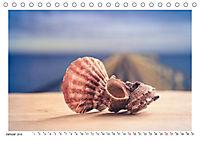 Meer Träumer - Muscheln und Schnecken Impressionen (Tischkalender 2019 DIN A5 quer) - Produktdetailbild 1