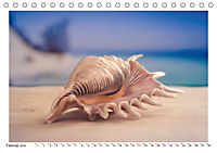Meer Träumer - Muscheln und Schnecken Impressionen (Tischkalender 2019 DIN A5 quer) - Produktdetailbild 2
