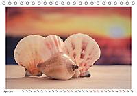 Meer Träumer - Muscheln und Schnecken Impressionen (Tischkalender 2019 DIN A5 quer) - Produktdetailbild 4