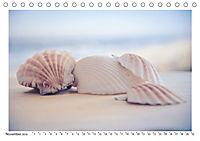 Meer Träumer - Muscheln und Schnecken Impressionen (Tischkalender 2019 DIN A5 quer) - Produktdetailbild 11