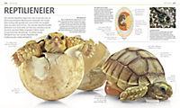 Mega-Wissen. Natur - Produktdetailbild 1