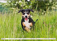 Mein bester Freund - Entlebucher Sennenhund (Wandkalender 2019 DIN A3 quer) - Produktdetailbild 4