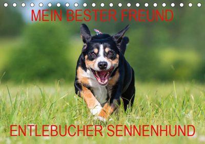 Mein bester Freund - Entlebucher Sennenhund (Tischkalender 2019 DIN A5 quer), N N