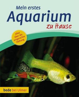 Mein erstes Aquarium zu Hause - Bernd Degen  
