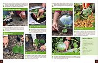 Mein Gemüsegarten - Gärtnern nach Bildern - Produktdetailbild 1