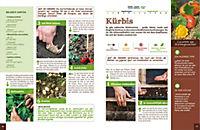 Mein Gemüsegarten - Gärtnern nach Bildern - Produktdetailbild 2