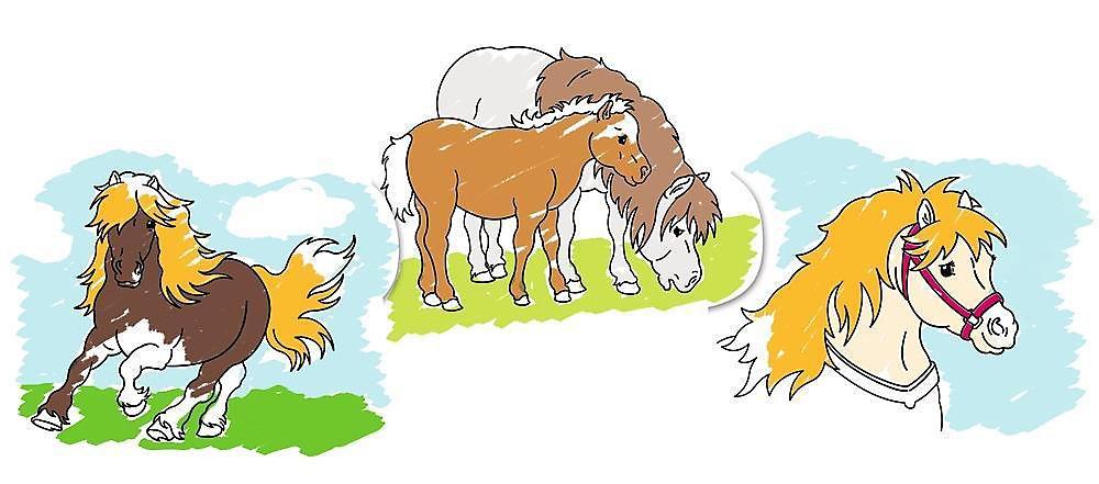malvorlagen mein kleines pony freundschaft ist magie
