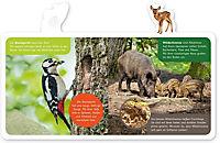 Mein kleines Tier-Lexikon - Tiere im Wald - Produktdetailbild 2