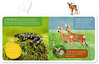 Mein kleines Tier-Lexikon - Tiere im Wald - Produktdetailbild 1