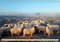 Mein Ostfriesland (Tischkalender 2019 DIN A5 quer) - Produktdetailbild 12