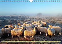 Mein Ostfriesland (Wandkalender 2019 DIN A4 quer) - Produktdetailbild 12