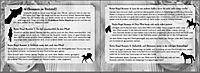 Mein Reiter-Tagebuch - Produktdetailbild 2