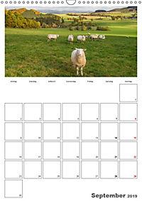 Mein Sauerland-Terminplaner (Wandkalender 2019 DIN A3 hoch) - Produktdetailbild 9