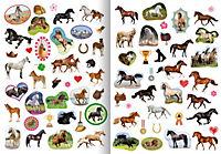 Mein Sticker-Malspaß - Pferde, Ponys und Fohlen - Produktdetailbild 1