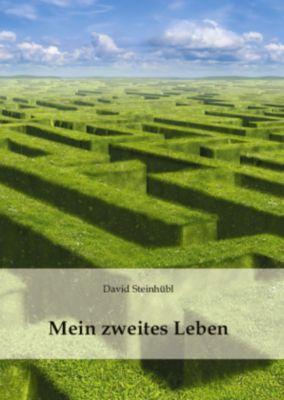 Mein zweites Leben - David Steinhübl  