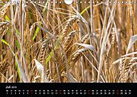 Meine Heimat Westerwald (Wandkalender 2019 DIN A4 quer) - Produktdetailbild 7