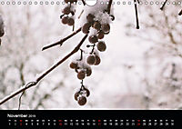 Meine Heimat Westerwald (Wandkalender 2019 DIN A4 quer) - Produktdetailbild 11