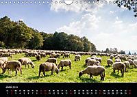 Meine Heimat Westerwald (Wandkalender 2019 DIN A4 quer) - Produktdetailbild 6