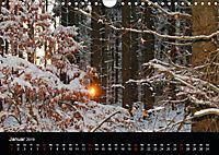 Meine Heimat Westerwald (Wandkalender 2019 DIN A4 quer) - Produktdetailbild 1