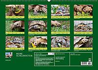 Meine Schildkröten (Wandkalender 2019 DIN A2 quer) - Produktdetailbild 13