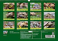 Meine Schildkröten (Wandkalender 2019 DIN A3 quer) - Produktdetailbild 13