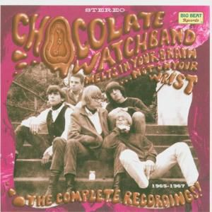 Melts In Your Brain...Complete Recording, Chocolate Watch Band