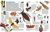 memo Wissen entdecken. Insekten - Produktdetailbild 1