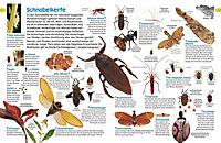 memo Wissen entdecken. Insekten - Produktdetailbild 2