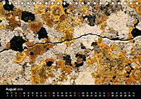 """""""Menorcas Felsen. Farbenfrohe Texturen"""" (Tischkalender 2019 DIN A5 quer) - Produktdetailbild 8"""
