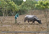 Menschen in Vietnam (Wandkalender 2019 DIN A4 quer) - Produktdetailbild 11
