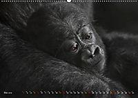 MENSCHENAFFENKINDER 2 (Wandkalender 2019 DIN A2 quer) - Produktdetailbild 5