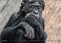 MENSCHENAFFENKINDER 2 (Wandkalender 2019 DIN A2 quer) - Produktdetailbild 10