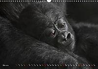 MENSCHENAFFENKINDER 2 (Wandkalender 2019 DIN A3 quer) - Produktdetailbild 5